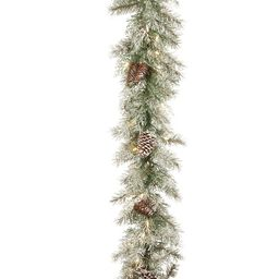 Frosted Mountain Spruce Garland   Wayfair North America