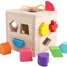 GEMEM Shape Sorter Toy My First Wooden 12 Building Blocks Geometry Learning Matching Sorting Gift... | Amazon (US)