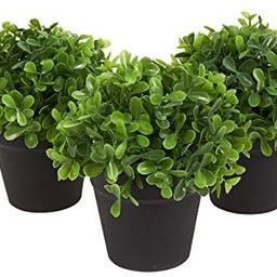 Juvale 3-Pack Mini Fake Plants Decoration, Potted Artificial Plants for Indoor Outdoor Home Déco...   Amazon (US)