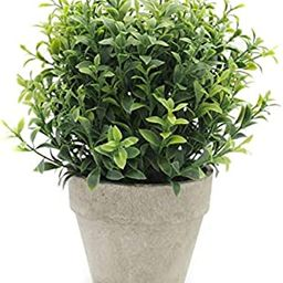 Velener Artificial Plants Mini Potted Grass Arrangements for Home Decor (Green, Seven-Layer)   Amazon (US)