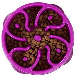 Outward Hound Kyjen 51005 Fun Feeder Slow Feed Interactive Bloat Stop Dog Bowl, Small, Purple | Amazon (CA)