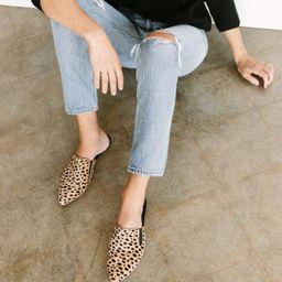 Cheetah Pony Hair Mule - Cheetah   Jenni Kayne   Jenni Kayne