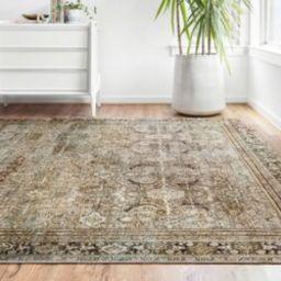 Giacinto Oriental Olive/Charcoal Area Rug | Wayfair North America