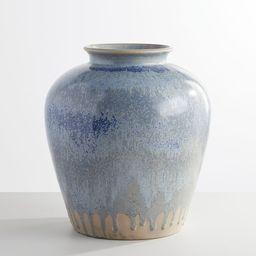 Ceramic Seehorn Vase | Pottery Barn (US)