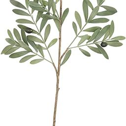 Creative Co-op Olive Branch Faux Botanical, Green   Amazon (US)