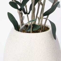 """30"""" x 24"""" Artificial Olive Plant Arrangement in Pot - Threshold™ designed with Studio McGee   Target"""