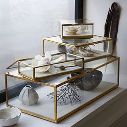 Glass Shadow Boxes | West Elm (US)