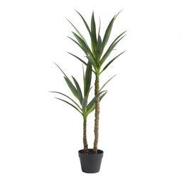 Faux Double Yucca Tree | World Market