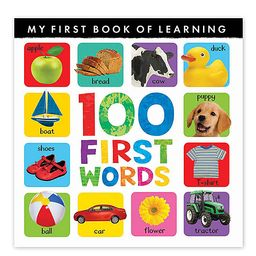 Tiger Tales Picture Books - 100 First Words Paperback | Zulily