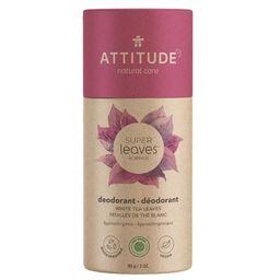 ATTITUDE Super Leaves Plastic-Free Natural Deodorant White Tea Leaves   Well.ca