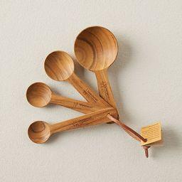 Teak Measuring Spoons | Anthropologie (US)
