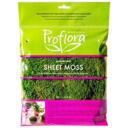 2 Oz. True Green Moss Sheet | Walmart (US)