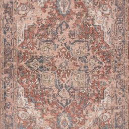 Multi Hand Knotted Floral Medallion 6' x 9' Area Rug | Rugs USA