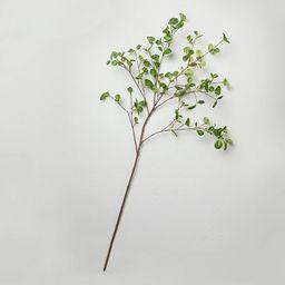 Faux Hazel Leaf Stem - Hearth & Hand™ with Magnolia | Target