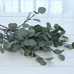 ZHIIHA Artificial Eucalyptus Garland Long Silver Dollar Leaves Foliage Plants Greenery Fake Plast...   Amazon (US)