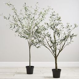 Faux Potted Olive Trees | Pottery Barn (US)