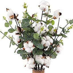 "CEWOR 6pcs 23.5"" Cotton Stems 4 Cotton Heads with Eucalyptus Leaves for Home Farmhouse Style Flor... | Amazon (US)"