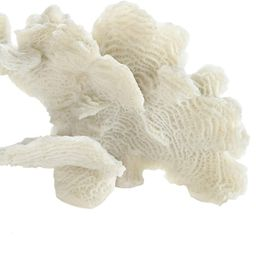 "Accent Plus Large White Coral Tabletop Decor 9.25x4.5x6.5""   Amazon (US)"