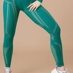 High-Waisted SculptKnit® Legging   Fabletics