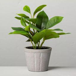 "7"" Mini Faux Azalea Potted Plant - Hearth & Hand™ with Magnolia | Target"