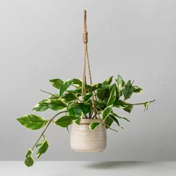 """8"""" Faux Hoya Leaf Hanging Plant - Hearth & Hand™ with Magnolia   Target"""