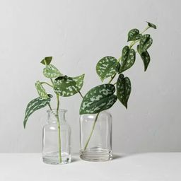 Set of 2 Small & Large Faux Silver Philodendron Arrangements - Hearth & Hand™ with Magnolia   Target