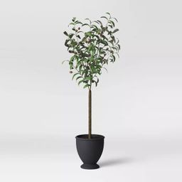 Faux Olive Tree in Pot Black/Green - Threshold™   Target