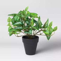 Faux Philodendron in Pot Green/Black - Threshold™   Target