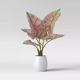 Faux Caladium Leaves in Pot Pink - Opalhouse™   Target