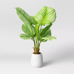 Faux Large Arrowroot in Pot White - Opalhouse™   Target
