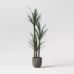 Faux Dracaena Plant Gray/Green - Project 62™ | Target