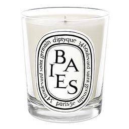 Diptyque Baies Candle-6.5 oz. | Amazon (US)