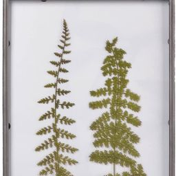 """NIKKY HOME 10"""" x 15"""" Vintage Metal Framed Fern Botanical Glass Wall Art Print with Rope 