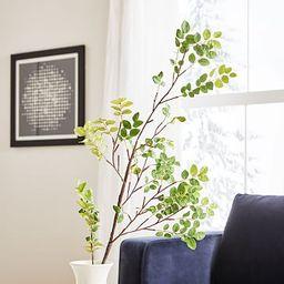 Faux Bean Leaf Branch   West Elm (US)