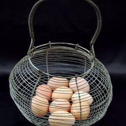 SALE French Vintage Wired Salad Basket/ Egg Basket | Etsy | Etsy (US)