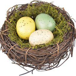 HEALLILY Handmade Bird Nest Artificial Nest with Egg Decorative Bird Nest for Shooting Props Home... | Amazon (US)