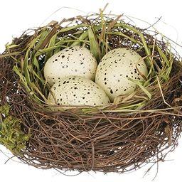 "Sullivans 4"" Replica Bird's Nest with Yellow Spotted Eggs | Amazon (US)"