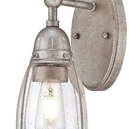 Westinghouse Lighting 6351000 North Shore One-Light Indoor, Weathered Steel Finish With Clear See... | Amazon (US)