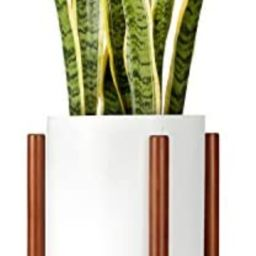 Mkono Plant Stand Mid Century Wood Flower Pot Holder (Plant Pot NOT Included) Modern Potted Stand... | Amazon (US)