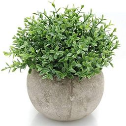 Velener Mini Plastic Artificial Plants Benn Grass in Pot for Home Decor (Green)   Amazon (US)