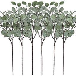 Artificial Greenery Stems 6 Pcs Straight Silver Dollar Eucalyptus Leaf Silk Greenery Bushes Plast...   Amazon (US)