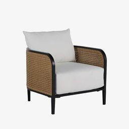 Berengar All-Weather Wicker Lounge Chair | Pottery Barn (US)