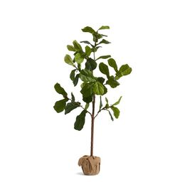 Faux Potted Fiddle Leaf Fig Tree, Medium - 5.4ft   Pottery Barn (US)