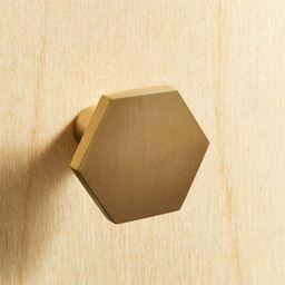 Hex Brushed Brass Mini Knob + Reviews | CB2 | CB2
