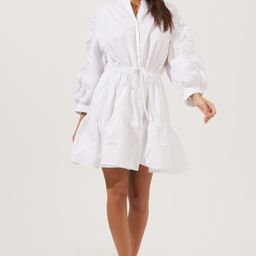 Ruched Long Sleeve Dress | ASTR The Label (US)