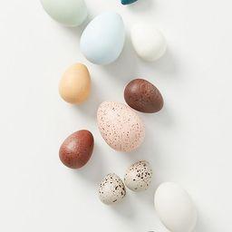 A Dozen Bird Eggs in a Box Set | Anthropologie (US)