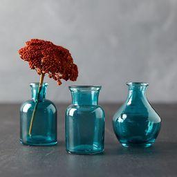 Bottle Bud Vases, Set of 3 | Anthropologie (US)