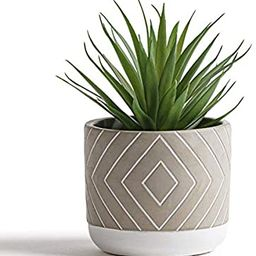 "Kurrajong Farmhouse 8"" x 4.5"" Artificial Green Plant in Gray Cement Pot, Beautiful Feaux Plant, S... | Amazon (US)"