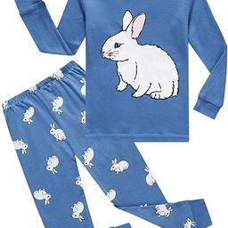 Boys Pajamas Long Sleeve Toddler Clothes Set Dinosaur 100% Cotton Little Kids Pjs Sleepwear   Amazon (US)