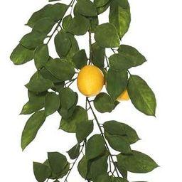 Vickerman FK170703 Everyday Lemon Garland   Amazon (US)